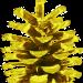 goldzapfen