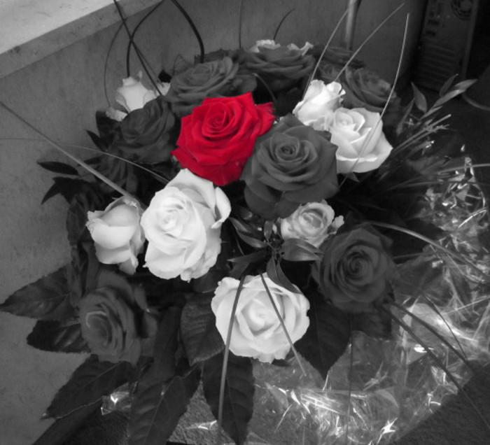 Schwarz Weiß Mit Farbe Gimp Werkstatt