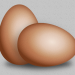 01-eier-braun-x2